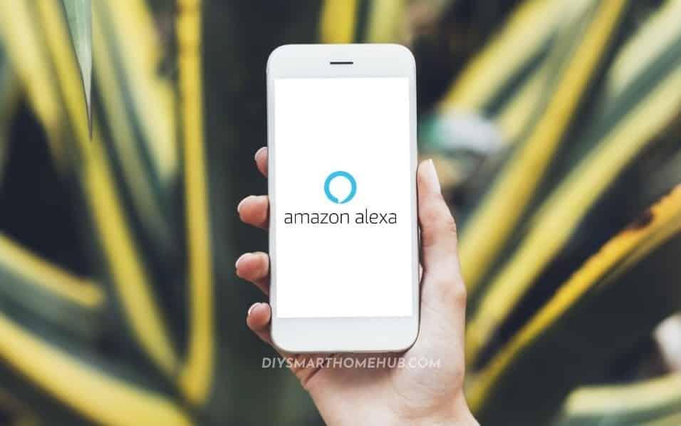 setup echo dot with alexa app